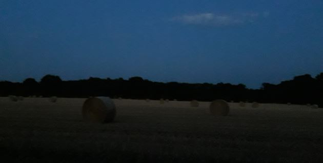 Blutmondnacht-Stoppelfeld