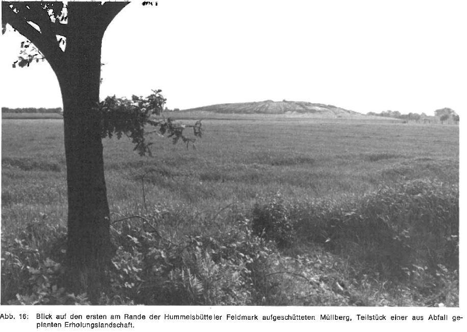 Quelle: Landespflege in Hamburg. Hrsg. vom Dt. Rat für Landespflege, 1973